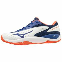 Mizuno Wave Flash CC