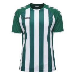 Camiseta Hummel Core Striped SS Jersey